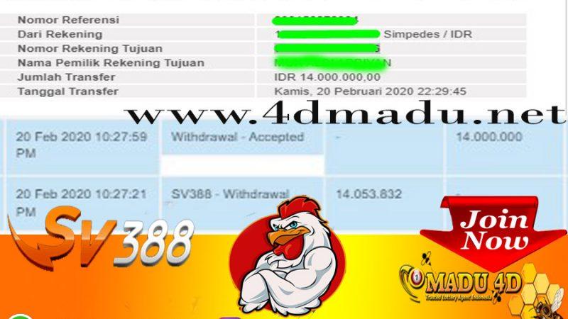 WD Sabung Ayam Sv388